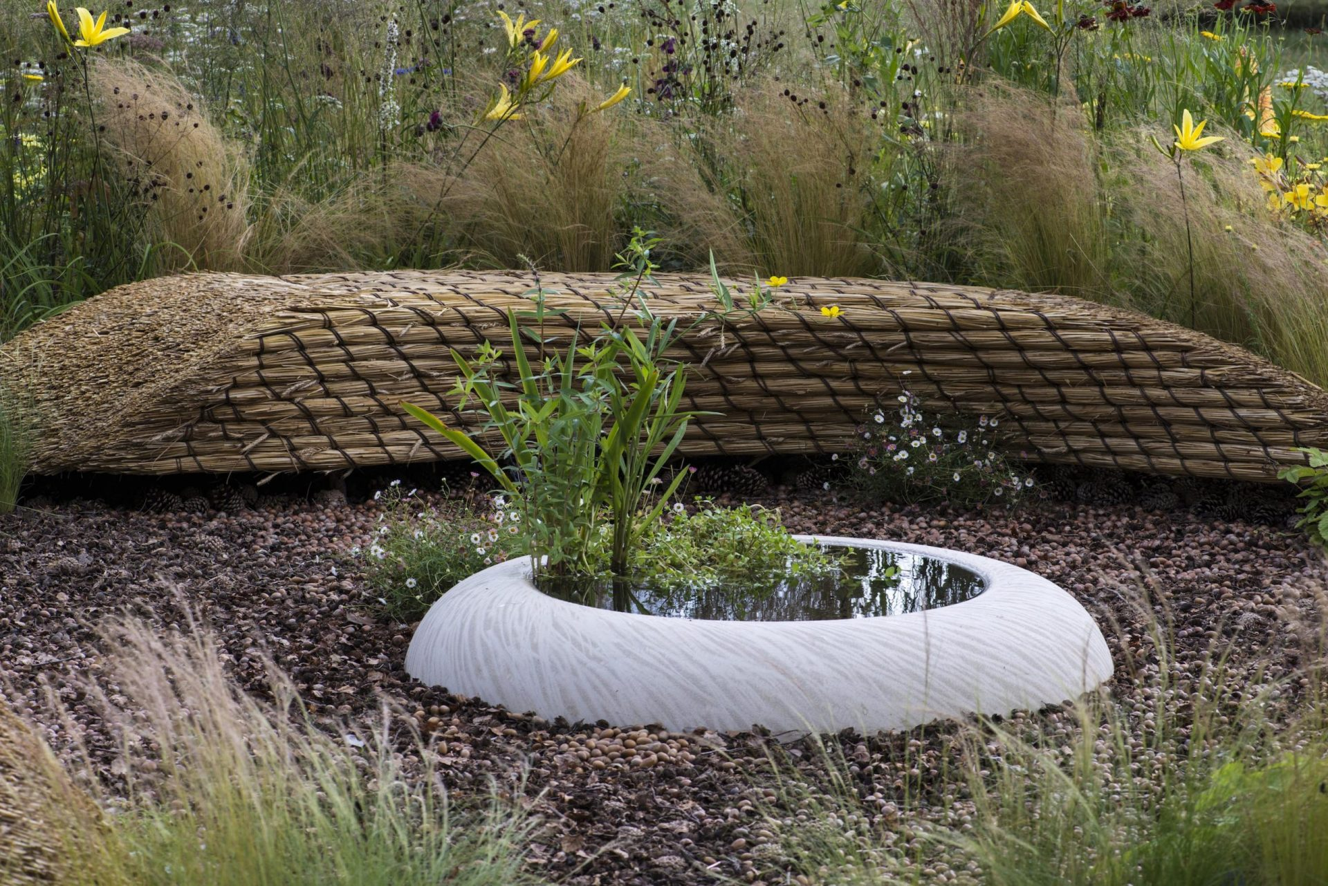 The Guardian - Going Wild at the Hampton Court Flower Show